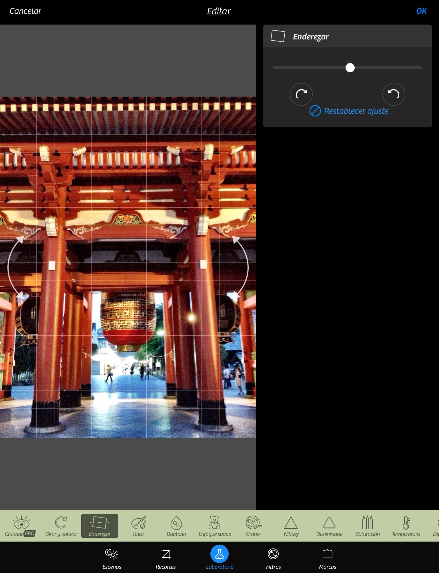 Camera+ en el iPad