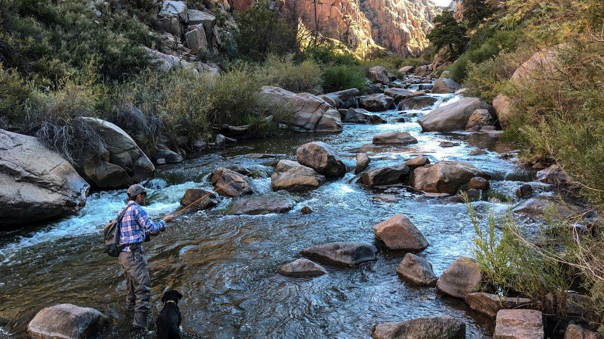 Fotos del iPhone 7 Plus de Outdoor