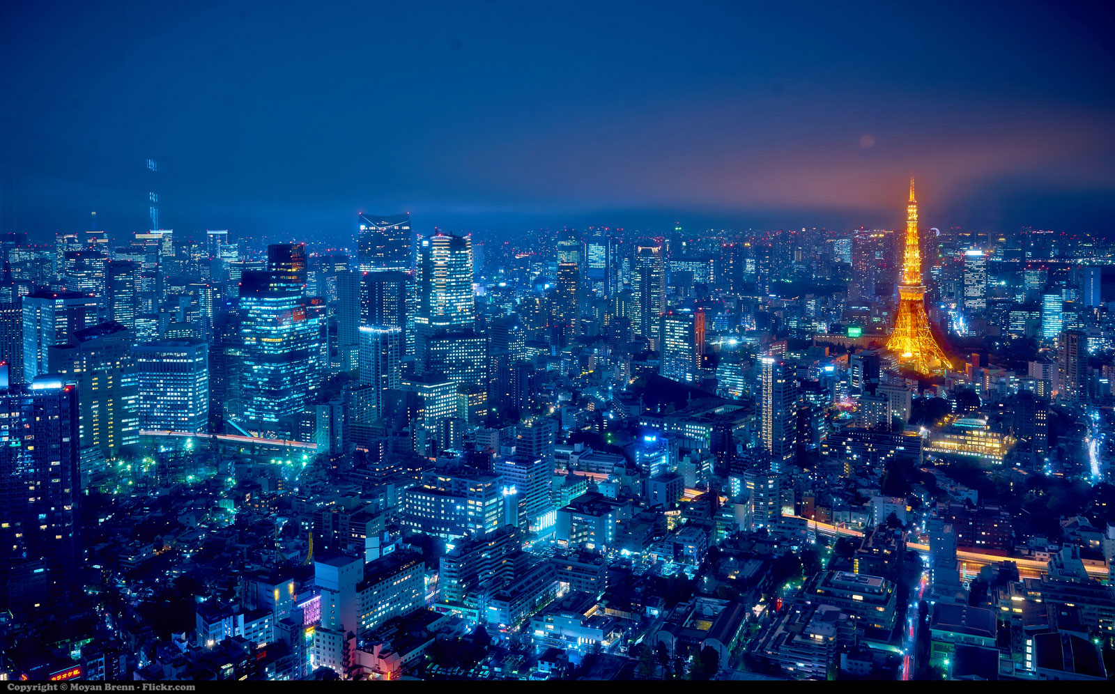 Tokio por la noche