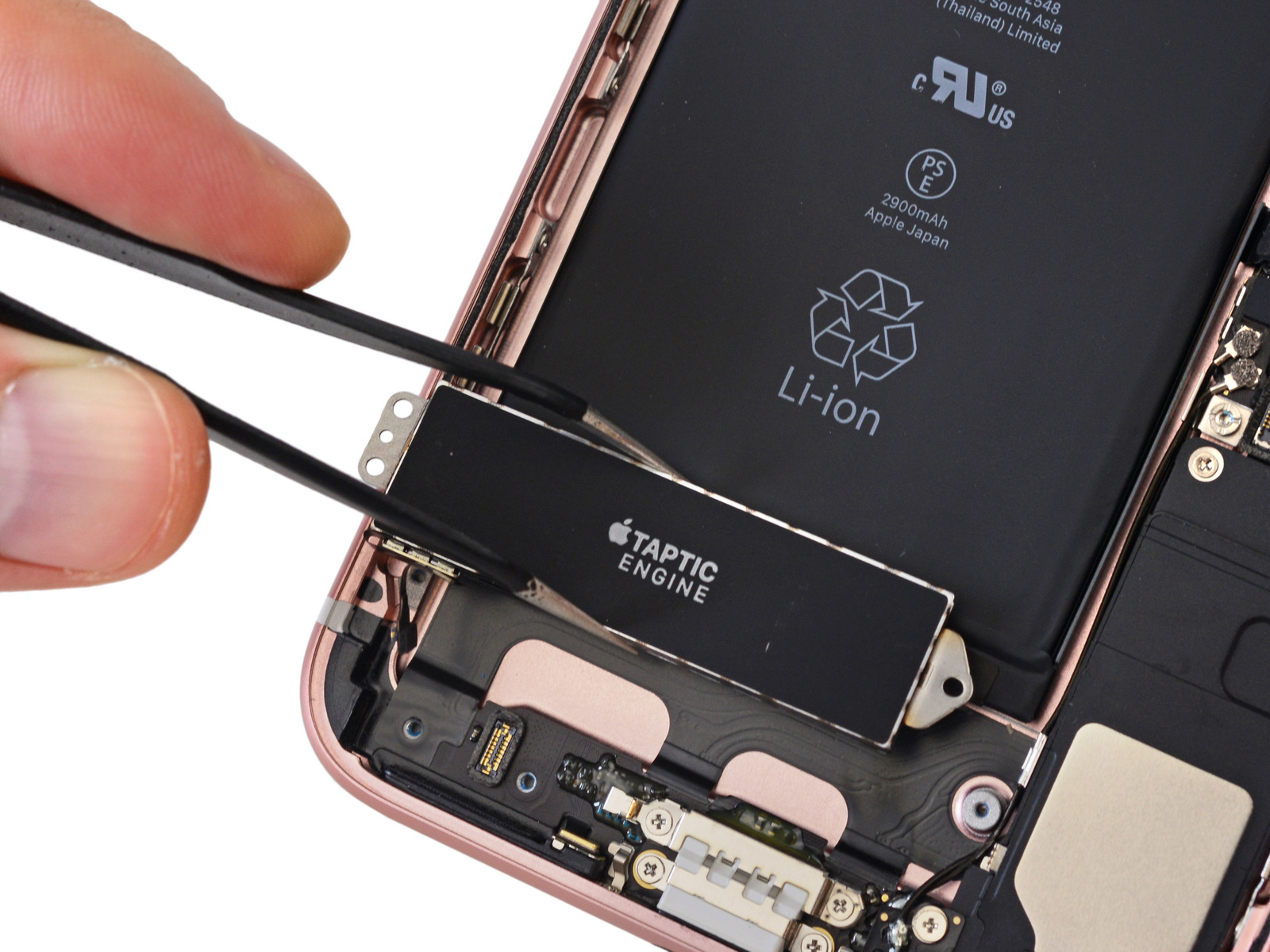 Motor háptico del iPhone 7 Plus