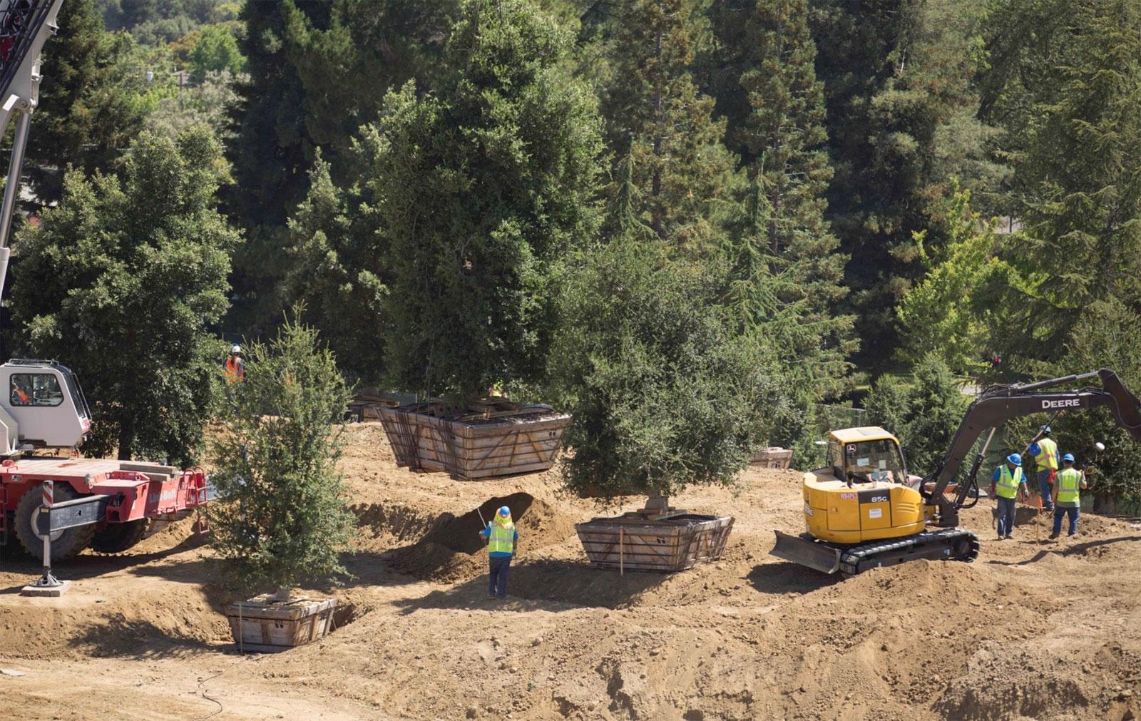 Obras de los jardines de las nuevas oficinas de Apple en el Campus 2